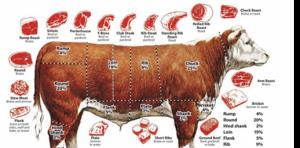 vleesvanboerjan