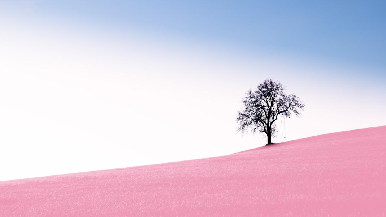 valkuilen van bewust en minimalistisch