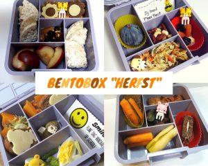 bentoboxen voor beginners