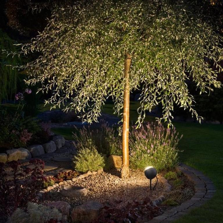 Coole effecten met tuinverlichting - boom pinterest