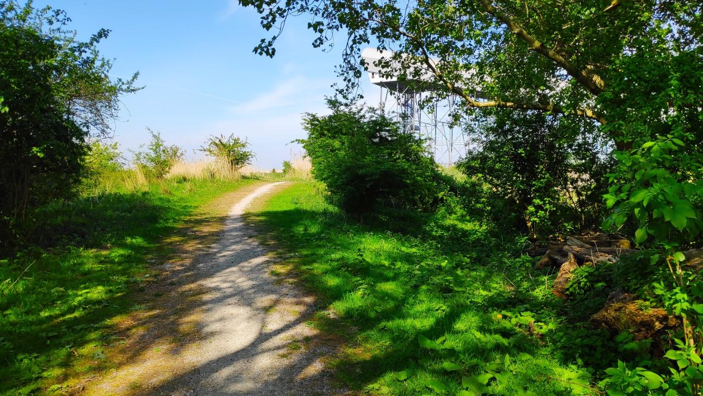Buytenpark in Zoetermeer wandelgebied